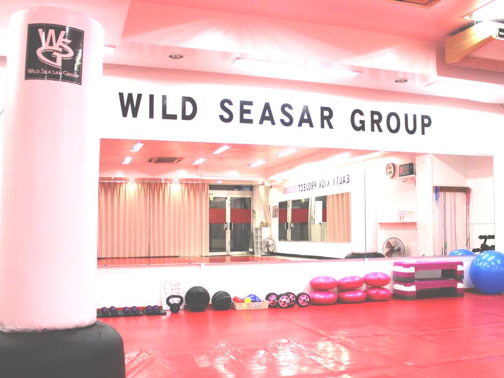 ワイルドシーサー那覇支部(山下町)・Beauty Kick用のサンドバッグ - キックボクシングジム
